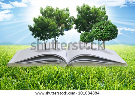 open book with the green tree in the garden - stock photo