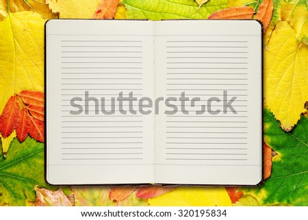 Open diary on autumn leaves background - stock photo