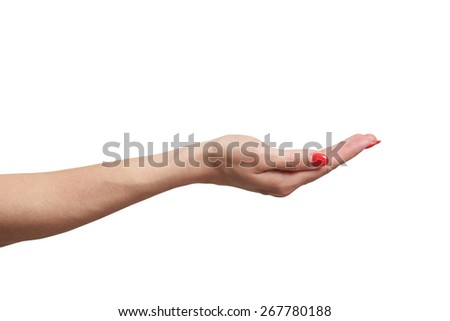 open female palm. isolated on white background - stock photo