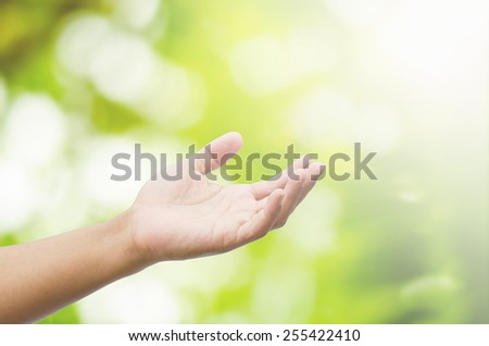 open hand on blurred abstract nature background - stock photo