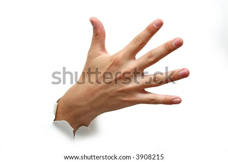 Open hand palm - stock photo