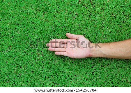 Open hands. Holding, giving, showing concept on green grass background texture