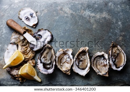 Open Oysters Fines de Claire on stone plate with lemon - stock photo