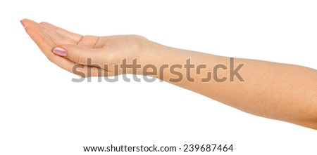 Open palm hand gesture of female hand isolated on a white background - stock photo