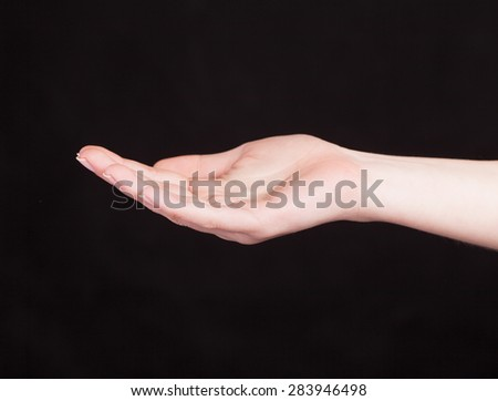 Open palm hand gesture of woman's hand. - stock photo