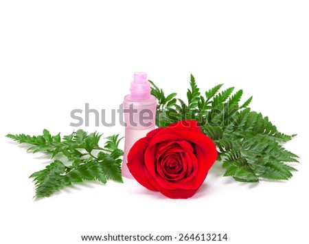 Open perfume bottle with natural fresh red rose and green fern leaves on white background - stock photo