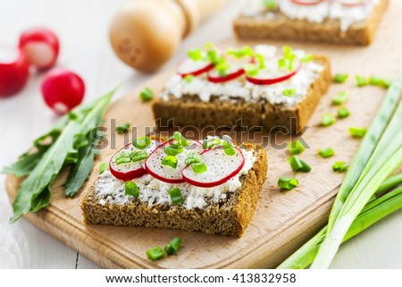 Open ray sandwiches with soft cream cheese and radish. Tasty summer snacks.