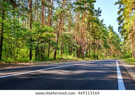 Open Road in future, no cars, auto on asphalt road through green forest, trees, pines, spruces.