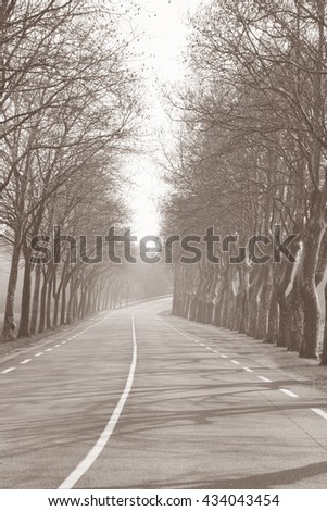 Open Road outside Uzes; Provence; France in Black and White Sepia Tone