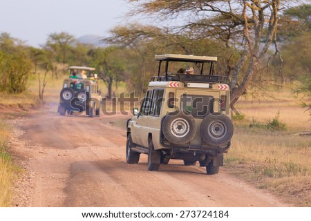 Open roof 4x4  safari jeeps on african wildlife safari.  - stock photo