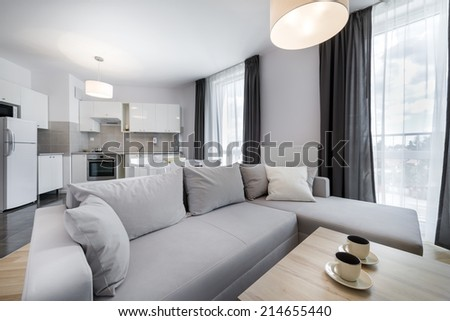 Open space, modern interior design living room in scandinavian style - stock photo