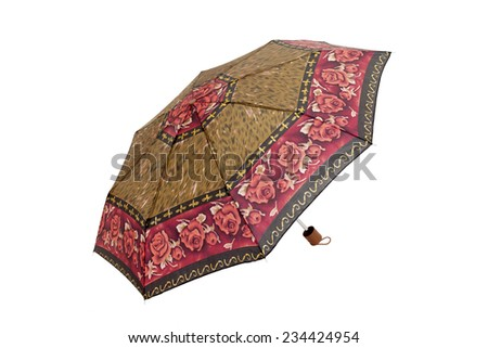 Open  umbrella with abstract elements and roses isolated on white with clipping path - stock photo