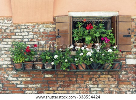 Open window with a row of blooming flower pots in Venice, Italy  - stock photo