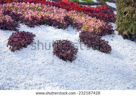 opened a traditional flower exhibition - stock photo