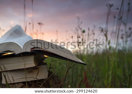 Opened hardback book diary, fanned pages on blurred nature landscape backdrop, lying in summer field on green grass against sunset sky with back light. Copy space, back to school education background. - stock photo