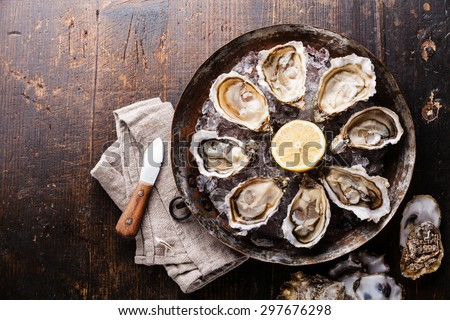 Opened Oysters on metal copper plate on dark wooden background - stock photo