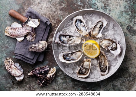 Opened Oysters on metal plate with ice and lemon on metal background - stock photo