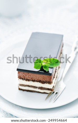 Opera cake on a white background. tinting. selective focus - stock photo