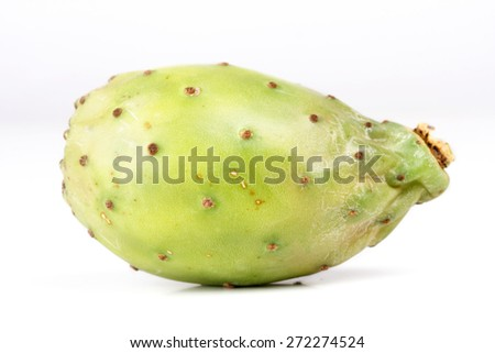 Opuntia ficus indica on white background