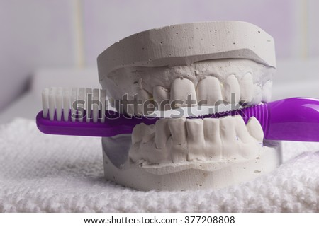 Oral hygiene health concept. Closeup violet toothbrush in dental gypsum model plaster - stock photo