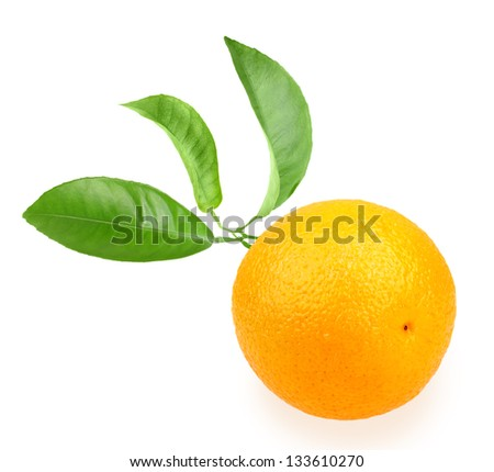 Orange and branch with green leaf on back. Placed on white background. Close-up. Studio photography.