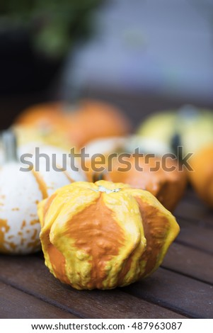 Orange and yellow decorative autumn gourd.