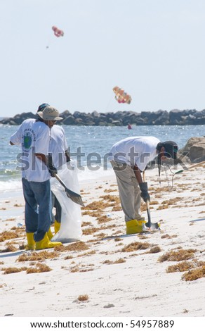 ORANGE BEACH, AL - JUNE 10: BP oil spill workers attempt to remove oil from the seashore of Perdido Pass, AL on June 10, 2010.  Parasails popular in the resort area can be seen in the distance. - stock photo