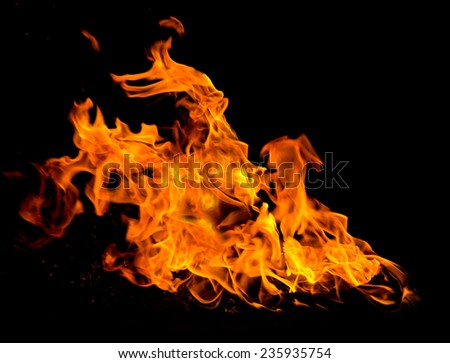 Orange fire flames on a black background - stock photo