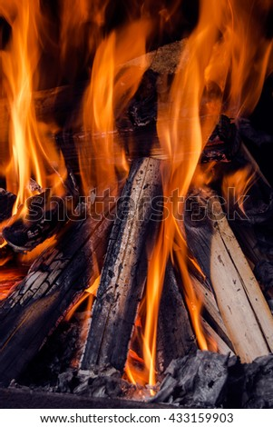 orange flames and dry wood in closeup view