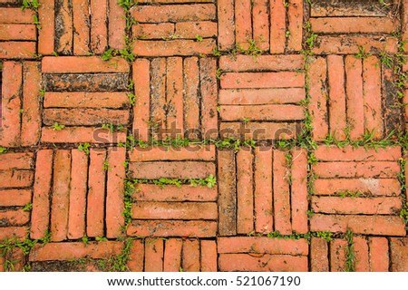 Orange floor make from vintage brick with little plant, ancient Thai style, Ayutthaya, Thailand