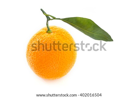 Orange fruit on white background.
