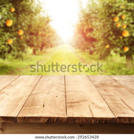 orange fruits and summer sun in garden and yellow wooden table  - stock photo