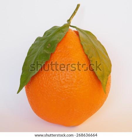 Orange fruits vegetarian food over simple background - stock photo