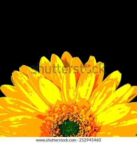 Orange gerbera daisy flower, posterize style image. - stock photo
