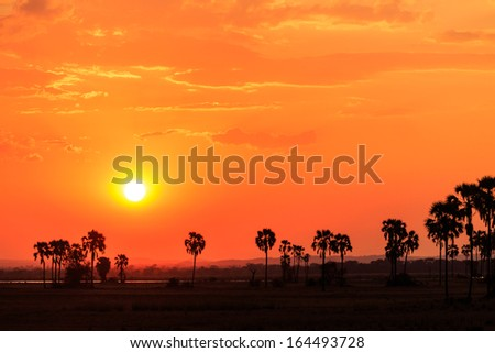 Orange glow sunset in a African landscape - stock photo