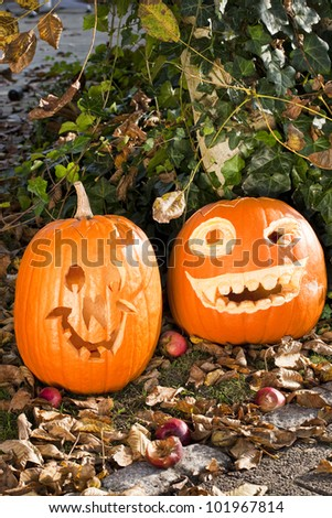 orange halloween pumpkins