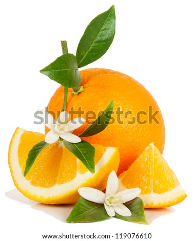 Orange, leaf, blossom and slice isolated on a white background. - stock photo