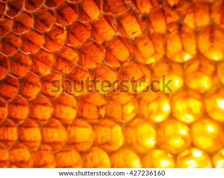 Orange light of honeycomb background - stock photo
