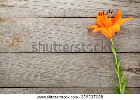 Orange lily flower on wooden table background with copy space - stock photo