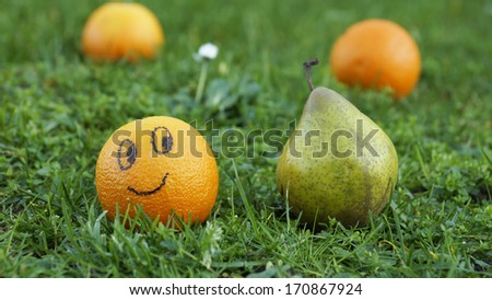 Orange looks to pear in a park