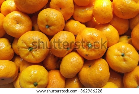 Orange mini - stock photo