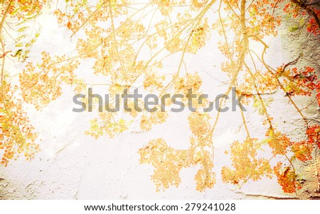 Orange peacock flowers in mulberry paper texture style vintage for background. - stock photo