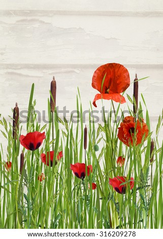 orange poppy flowers and cattails in tall grass - stock photo