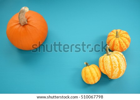 Orange pumpkin and yellow Festival squash on bold teal painted wood background with copy space