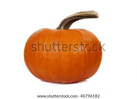 Orange Pumpkin Isolated on White Background