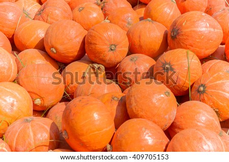 Orange pumpkins for background.