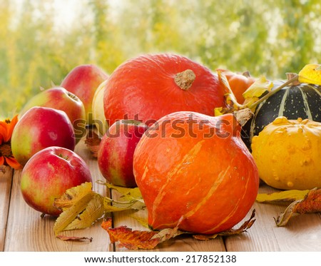 Orange Pumpkins with apples and  fall leaves. Selective focus - stock photo