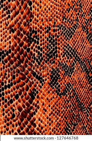 Orange reptile skin - stock photo