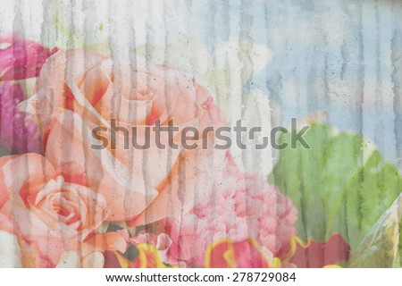 orange rose on grunge dirty wall background - stock photo
