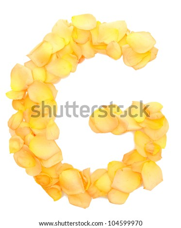 orange rose petals forming letter G, isolated on white